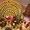 ФРУКТОВЫЙ ПАВЛИН АКТОБЕ ChokoWay #979970